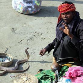 snake-charmer-in-india